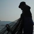 安さも美味しさも、漁師さんのおかげです!