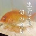 【魚】店内入口には生簀で泳ぐ旬の魚貝。