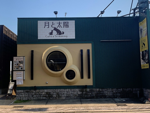 Dogs&Cats Cafe 月と太陽