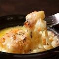 料理メニュー写真スモークチーズのラザニア