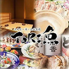 とりうお TORI魚 新宿店の写真