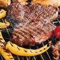 料理メニュー写真E《2H飲み放題付×お料理12品》4種のお肉!リゾートビアガーデンコース