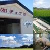 豚と牛とホルモン焼肉酒場 もんほるのおすすめポイント3
