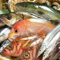 美味しい魚とおいしい酒が楽しめる!鮮度の良い刺身に舌鼓♪地物のメニューも各種ございます!