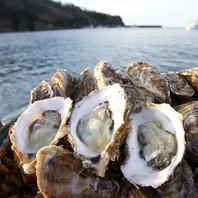 狐崎漁港直送の牡蠣