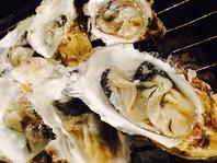 [厚岸佐藤水産直送!]牡蠣が毎日1ケ80円