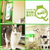 猫カフェ くすめっと Qsmet 江坂・西中島・新大阪・十三のグルメ