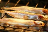 [しゃも次郎一押し!]北海道食材を炉端焼きで満喫