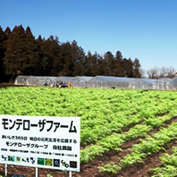 自社農園を運営しています