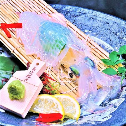 活き鯖、活きイカが名物!もつ鍋、水炊きも愉しめるコースあり!