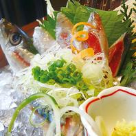 豊洲より仲買人が選んだ鮮魚が格安500円で提供中