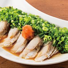 料理メニュー写真炙り〆サバ葱まみれおろしポン酢