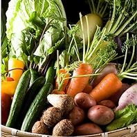 「地産地消」にこだわり糸島野菜や地魚を楽しむ