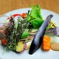 料理メニュー写真有機野菜サラダ ミネラルドレッシング 黒ニンニクディップ