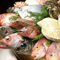 名物桶盛り!旬の魚を好きな食べ方で!!