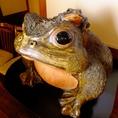 創業から見守る蛙の親子。『一番の』働き者です♪