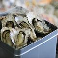 料理メニュー写真マルゴ水産から伊勢湾直送の牡蠣