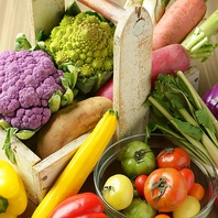こだわりの有機野菜♪金山の健康になれるイタリアン店♪
