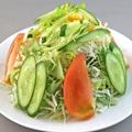 料理メニュー写真野菜サラダ