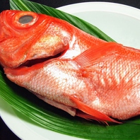銚子沖釣り金目鯛
