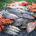 ■鮮度抜群 活魚介■ 根室の契約漁師さんや、契約している魚屋さんより、鮮度抜群の魚介類が、毎日店舗に直送されています!