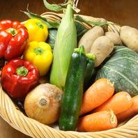 大地を守る会の季節野菜♪