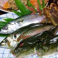 鮮度抜群の海鮮を安くご提供いたします!