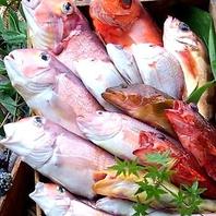 春夏秋冬に合わせた鮮度抜群の魚を目利き!