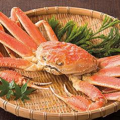 北海道 紋別直送浜茹でズワイ蟹