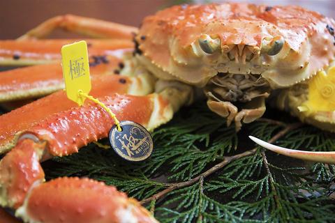 越前海の幸料理はまさきの写真