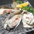 料理メニュー写真新鮮!生牡蠣
