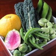 契約農家直送!鹿児島県産新鮮な旬のイタリアン野菜を♪