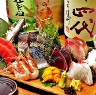 ≪鮮度抜群で宴会を彩る食材≫当店自慢の新鮮鮮魚♪