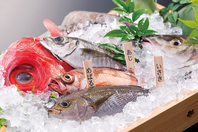本日のおすすめ魚。