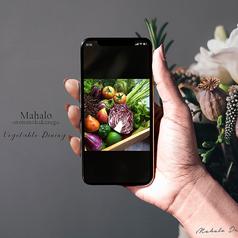 マハロ MAHALO Vegetable Dining 天神大名の写真