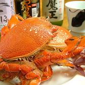 みやざき魚菜 志ほ はなれのおすすめ料理3