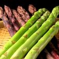 料理メニュー写真【新発田産・極太アスパラ】ボイル・焼き・天麩羅・肉巻き…