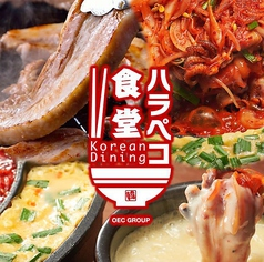 Korean Dining ハラペコ食堂 GEMSなんば店の特集写真