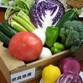 【野菜】甘~い奈良県の朝採れ野菜