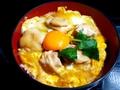 料理メニュー写真特製 親子丼