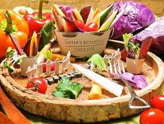 本日の野菜でヨツクロ庭園