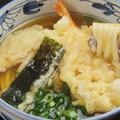 料理メニュー写真天ぷらうどん