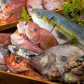 旬の新鮮な鮮魚も常時5~7種ほどをご用意しています。