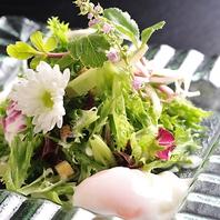こだわりの有機栽培野菜