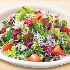 しらすと紫蘇としば漬けの和風サラダ