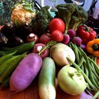 40種以上の旬なお野菜をご用意しております。