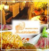 オレンジツリー ごはん,レストラン,居酒屋,グルメスポットのグルメ