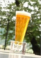 ゲストビール!