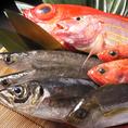 市場から新鮮な魚貝を仕入れています!!