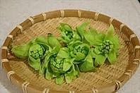 春の山菜・かき揚げフェア
